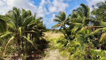 56-664 Kamehameha Hwy 2 Kahuku, Hi  vacant land - photo 1 of 23