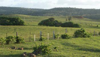 58-248 Kamehameha Hwy D Haleiwa, Hi 96712 vacant land - photo 5 of 7