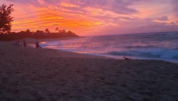 58-312  Kamehameha Hwy ,  home - photo 1 of 20