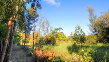 59-756 Kanalani Pl  Haleiwa, Hi 96712 vacant land - photo 3 of 20