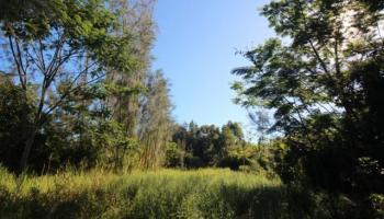 59-756 Kanalani Pl  Haleiwa, Hi 96712 vacant land - photo 4 of 20