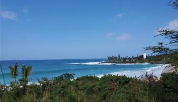 61-581  Pohaku Loa Way Kawailoa-north Shore,  home - photo 1 of 20