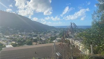 664  Aipuni Street Aina Haina Area, Diamond Head home - photo 3 of 9