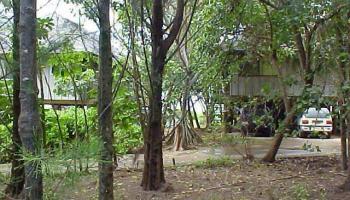 68105 Au St  Waialua, Hi 96791 vacant land - photo 3 of 4