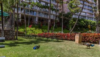 Makaha Valley Towers condo # 609, Waianae, Hawaii - photo 5 of 13