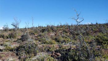 92-8527 Iwalani Circle  Naalehu, Hi 96772 vacant land - photo 2 of 24