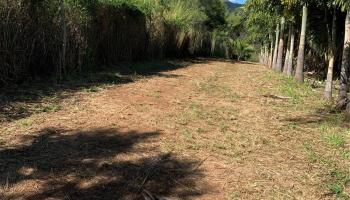 98-232B Kaluamoi Pl Pearl City, Hi  vacant land - photo 1 of 14