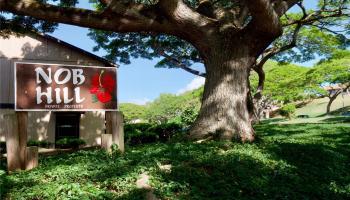 94-1448 Lanikuhana Ave townhouse # 403, Mililani, Hawaii - photo 1 of 16