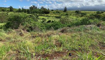 94-1055 Kaloli Loop Waipahu, Hi 96797 vacant land - photo 1 of 25
