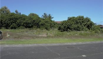 95 Kapuahi Street  Makawao, Hi  vacant land - photo 1 of 1