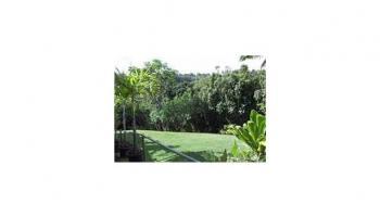 991230B Halawa Heights Rd Aiea, Hi 96701 vacant land - photo 3 of 8