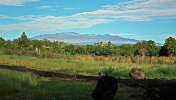 Ainaola Ainaola, Lot 1517 Dr Hilo, Hi 96720 vacant land - photo 1 of 10