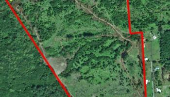 Ainaola Ainaola, Lot 1517 Dr Hilo, Hi 96720 vacant land - photo 3 of 10