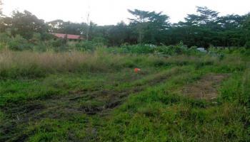 0 22nd Ave Keaau, Hi 96749 vacant land - photo 0 of 4