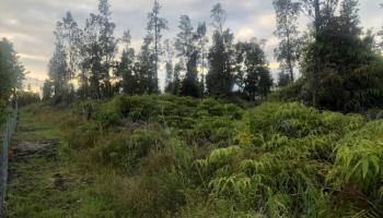 56-664 Kamehameha Hwy 14 Kahuku, Hi 96731 vacant land - photo 1 of 12
