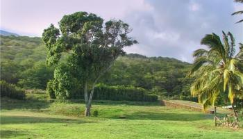 8794 Kamehameha V Hwy  Kaunakakai, Hi 96748 vacant land - photo 1 of 30