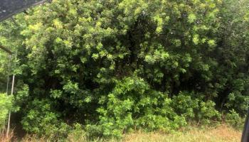 0 Kane Pl Naalehu, Hi 96772 vacant land - photo 0 of 2