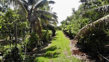 Lot 1 Plantation Road  Kahuku, Hi  vacant land - photo 1 of 24