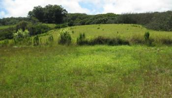 Lot 10 Awalau Rd , Hi 96708 vacant land - photo 3 of 15