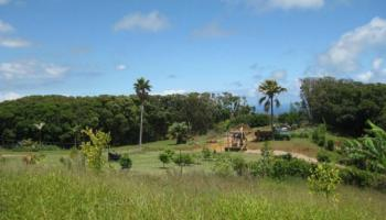 Lot 10 Awalau Rd , Hi 96708 vacant land - photo 5 of 15