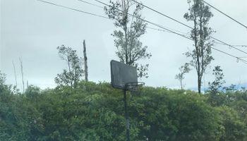 Lot 11 Hanale Drive  Pahoa, Hi 96778 vacant land - photo 1 of 1