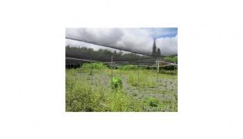 41-046 Hihimanu Street Waimanalo, Hi 96795 vacant land - photo 0 of 18