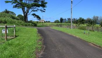 Lot 80 Loa Road  Pepeekeo, Hi  vacant land - photo 1 of 8