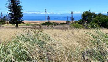 0 Mahiki Place  Maunaloa, Hi 96770 vacant land - photo 2 of 10