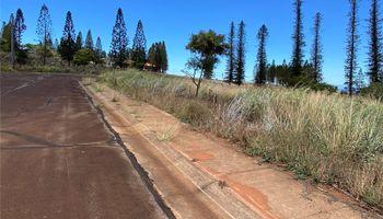 0 Mahiki Place  Maunaloa, Hi 96770 vacant land - photo 5 of 10