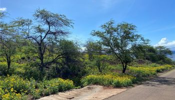 0 Makaiki Road  Kaunakakai, Hi  vacant land - photo 1 of 14