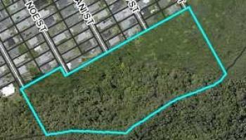 0 Moani Street  Honolulu, Hi 96819 vacant land - photo 1 of 5