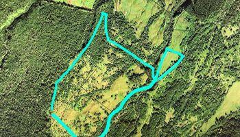 0 N/A Road  Ookala, Hi 96774 vacant land - photo 1 of 16