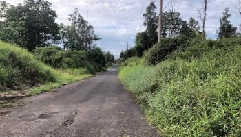 5024 Poke Street  Hilo, Hi  vacant land - photo 1 of 25
