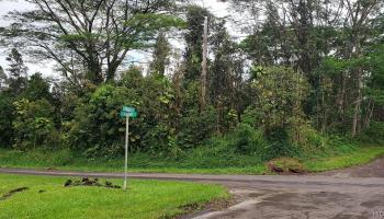 0 Pikake Road  Pahoa, Hi 96778 vacant land - photo 1 of 25