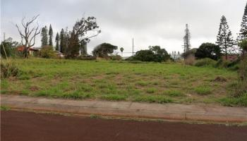 270 Ulua Rd Kaunakakai, Hi 96748 vacant land - photo 1 of 9